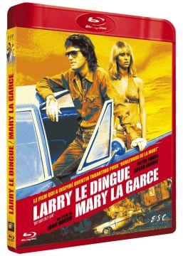 Larry le dingue, Mary la garce