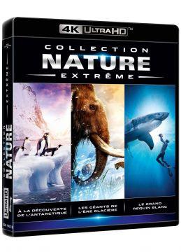 Collection Nature Extreme : À la découverte de l'Antarctique + Les géants de l'ère glacière + Le grand requin blanc