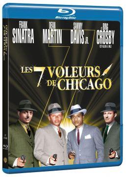 Les 7 voleurs de chicago