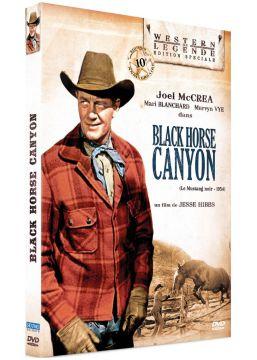 Black Horse Canyon (Le mustang noir)