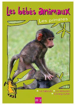 Les Bébés animaux - Les primates